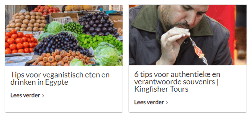 Kingfisher Tours reistips
